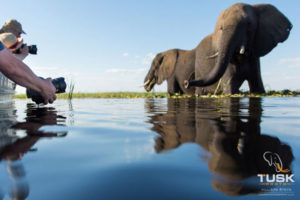 Botswana Part III – Chilling on the Chobe